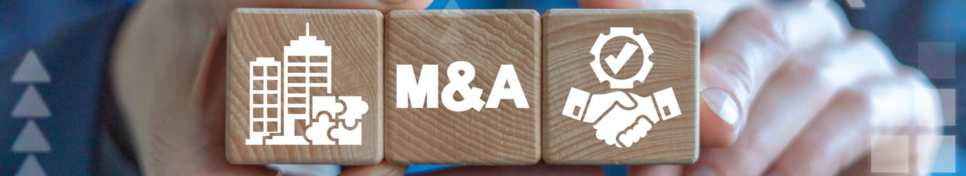 Do Pharma Mergers and Acquisitions Improve R&D Productivity and Increase Shareholder Value?
